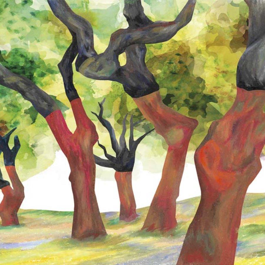 Alentejo, Portugal, Teresa Arroyo Corcobado, Illustration