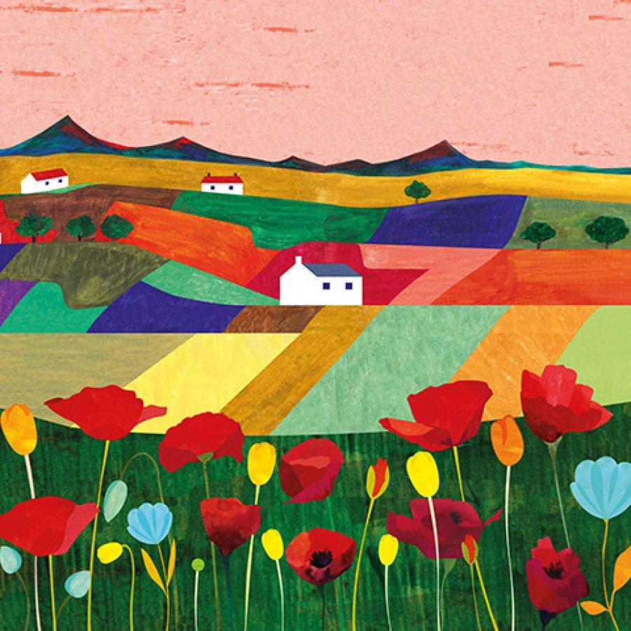 Campos de amapolas / Fields poppy